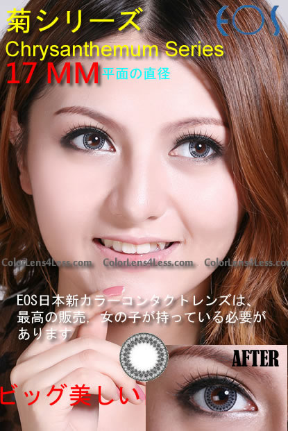 EOS Chrysanthemum Grey Colored Contacts (PAIR)