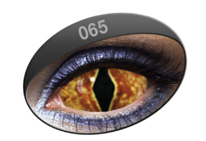 Cat Sclera Lens 065 (Pair)