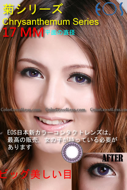 EOS Chrysanthemum Violet Colored Contacts (PAIR)