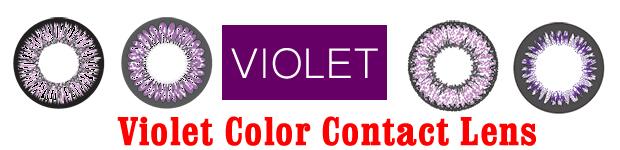 Violet Color Contact Lens